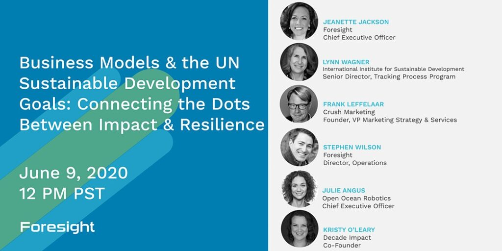 Business Models & the UN Sustainable Development Goals - Connecting the Dots Between Impact & Resilience banner