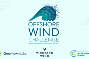 Open Ocean Robotics Wins Spot in Offshore Wind Challenge to Create Marine Mammal Monitoring Solution